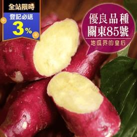日本瘋搶大份量栗香地瓜