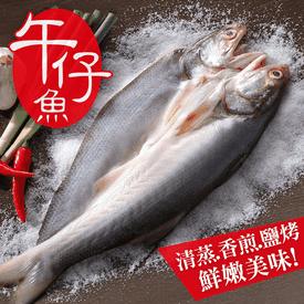獨享薄鹽午仔魚一夜乾