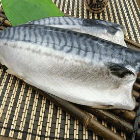 超厚挪威薄鹽鯖魚190G